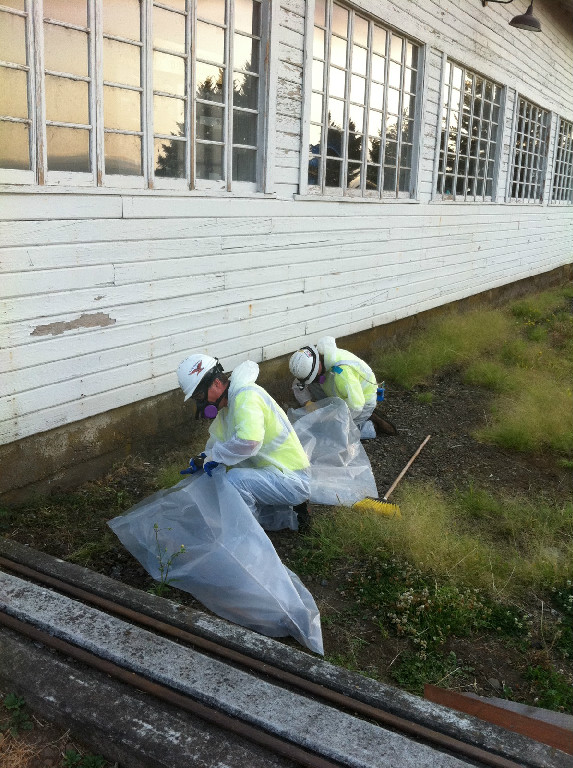 Photo gallery pacific northwest environmental for Removing lead paint from exterior of house